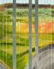 Rebecca Dufoort - Het versneden landschap 3