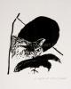 Roger Raveel Kat met vogel