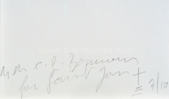 Borremans Michael - For Saint Jan