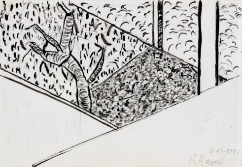 Raveel Roger - Groentetuin gezien vanuit het raam van mijn tekena